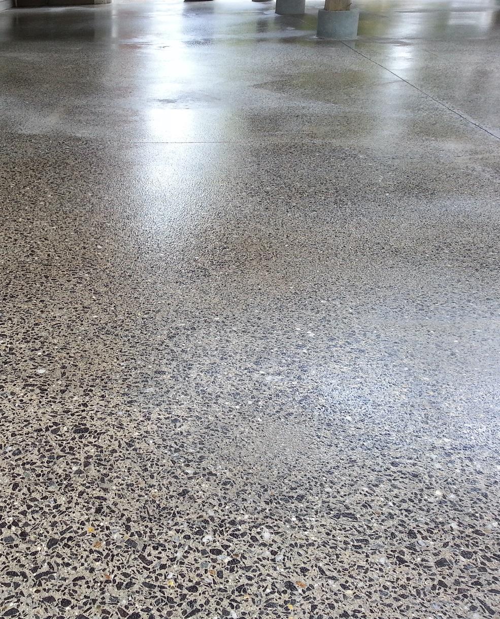 Polished Concrete By Black Bear Coatings & Concrete